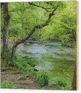 Peaceful Scene Wood Print