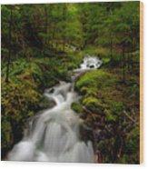 Peaceful Stream Wood Print by Mike Reid