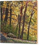 Peaceful Trees Wood Print