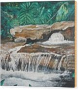 Peaceful Waters Flow Wood Print