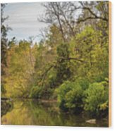 Peaceful Waters Wood Print