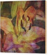 Peach And Yellow 2625 Idp_2 Wood Print