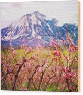Peach Blossoms And Mount Lamborn II Wood Print