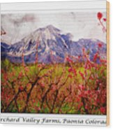 Peach Blossoms And Mount Lamborn Orchard Valley Farms Wood Print