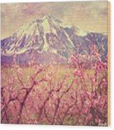 Peach Booms And Mount Lamborn Wood Print