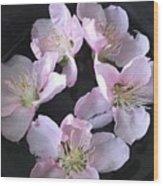 Peach Flowers Wood Print