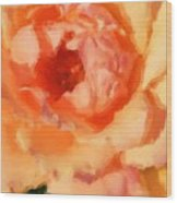 Peach Rose - Digital Painting Wood Print