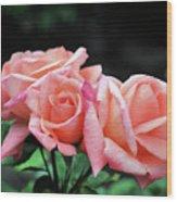 Peach Rosebud Trio Wood Print