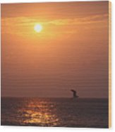 Peach Sunrise And Bird In Flight Wood Print