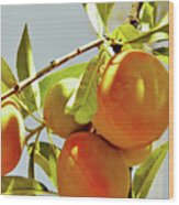 Peaches On The Tree Wood Print
