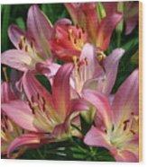 Peachy Pink Lilies Wood Print