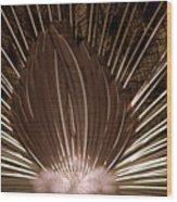Peacock 02 Wood Print