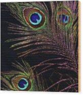 Peacock 5 Wood Print
