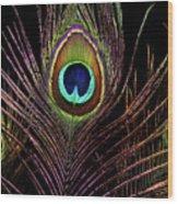 Peacock 6 Wood Print