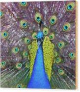 Peacock Art Wood Print