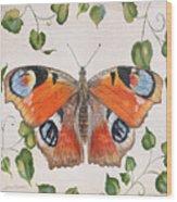 Peacock Butterfly-jp3878 Wood Print