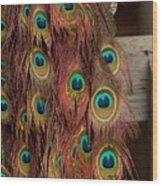 Peacock Fall Wood Print