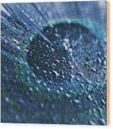 Peacock Feather Macro Waterdrops Wood Print