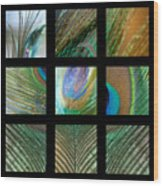Peacock Feather Mosaic Wood Print