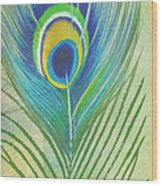 Peacock Feathers-jp3609 Wood Print