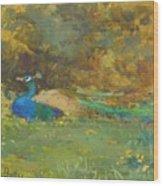 Peacock In A Garden Wood Print