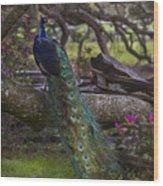 Peacock On The Plantation Wood Print