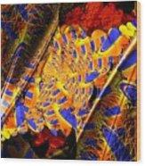 Peacock Parts Wood Print