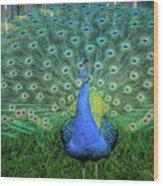 Peacock1 Wood Print