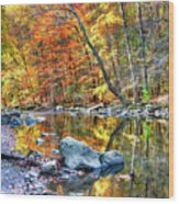 Peak Fall Foliage At The Black River Wood Print
