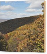 Peak Foliage Wood Print