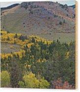 Peak To Peak Highway Boulder County Colorado Autumn View Wood Print