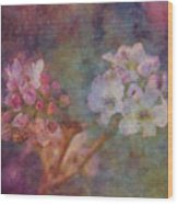 Pear Blossom Morning Impression 8941 Idp_2 Wood Print