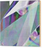 Pearl Pocketknife Wood Print