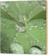Pearls On Leaf Wood Print