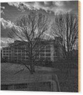 Pearson Education Building Wood Print