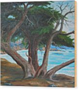 Pebble Beach Wood Print