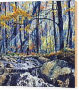 Pebble Creek Autumn Wood Print