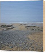Pebble Strewn Beach Wood Print