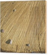 Pebbles And Texture On A Crosscut Log Wood Print