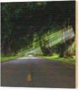 Pecan Alley Rays - Arkansas - Landscape Wood Print