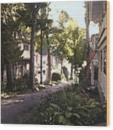 Peck Street Wood Print