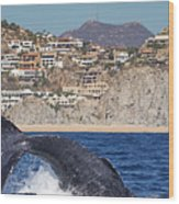 Pedregal - Cabo San Lucas Wood Print