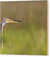 Peek-a-boo Birdie Wood Print by Bob Decker