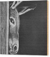 Peek-a-boo Burro Wood Print