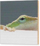 Peek-a-boo Lizard Wood Print