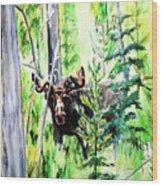 Peek A Boo Moose Wood Print