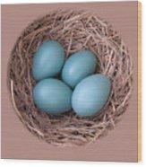 Peek Into A Robin's Nest Wood Print