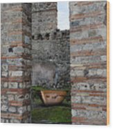 Peek Into The Past - Pompeii Wood Print