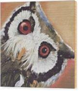 Peekaboo Owl Wood Print