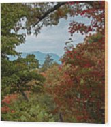 Peeking At The Smokies Wood Print